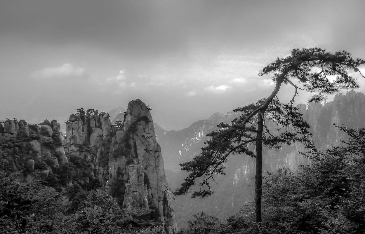 Beauty In Nature Black And White Blackandwhite Cloud - Sky Clouds And Sky Day Mountain Nature No People Outdoors Rock Formation Scenics Sky Tree Tree Yellow Mountains