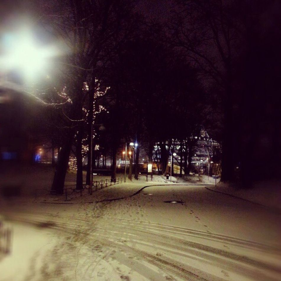 The freezing exciting weather ;-) Loving it <3 Snow Swedishwinter Earlymorning  Cold -5Degrees