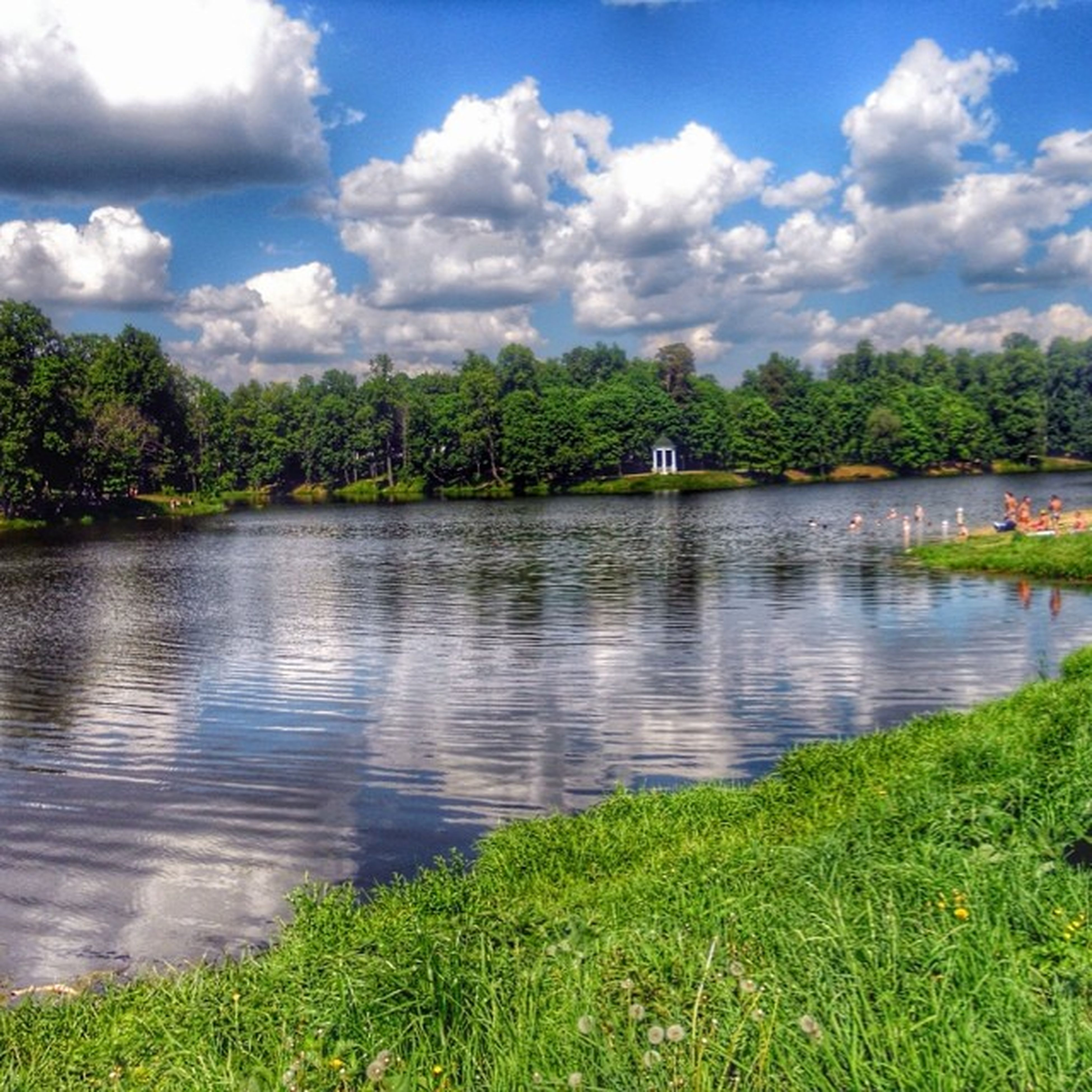water, tree, sky, tranquil scene, cloud - sky, tranquility, lake, scenics, grass, beauty in nature, cloud, nature, reflection, green color, cloudy, growth, river, idyllic, day, plant