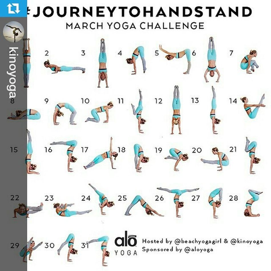 "Repost @kinoyoga ・・・ Announcing the March Yoga Challenge ➡️JourneytoHandstand⬅️ Hosts: @kinoyoga & @beachyogagirl Sponsored by: @aloyoga For March we will be teaching you the fundamentals of learning how to handstand. ALL levels are welcome to participate in this challenge - especially beginners! The amazing people at @aloyoga will be giving away prizes for those that participate daily! Here is how to join the challenge: 1⃣Repost this photo and tag some friends to join you on the journey! 2⃣FOLLOW 👉@kinoyoga, @beachyogagirl and @aloyoga 3⃣Post daily starting March 1st (your hosts will post the night before to show you what that day's challenge is) 4⃣Include JourneytoHandstand @kinoyoga, @beachyogagirl & @aloyoga in your daily posts.  5⃣Make sure your account is ""public"" so everyone can see it. Bonus: We have also made you a 31 day video series that will follow along with his challenge! 🎉 If you are new to handstands or want to improve get this series on @codyapp! Go to: Codyapp.com/journeytohansstand (link in bio) Who is excited to take the Journey to Handstand? You in?"