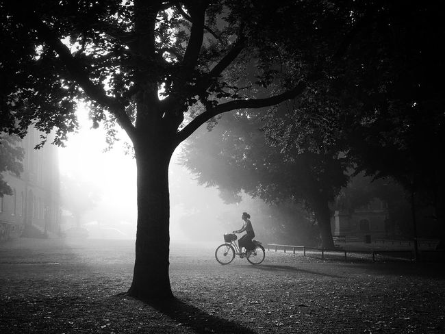 Bicycle Silhouette Solitude Tranquil Scene Monochrome EyeEm Best Shots - Black + White Streetphoto_bw Darkness And Light Bw_collection EyeEm Best Shots Street Photography