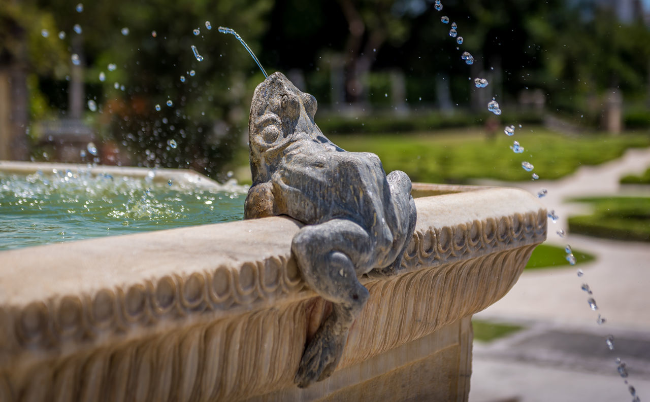 Close-up Day Focus On Foreground Fountain Frog Garden Photography Gardens Nature No People Outdoors Selective Focus Statue Tranquility Vizcaya Vizcaya Gardens Vizcaya Museum Vizcayagardens Vizcayamuseum Vizcayamuseumandgardens Water