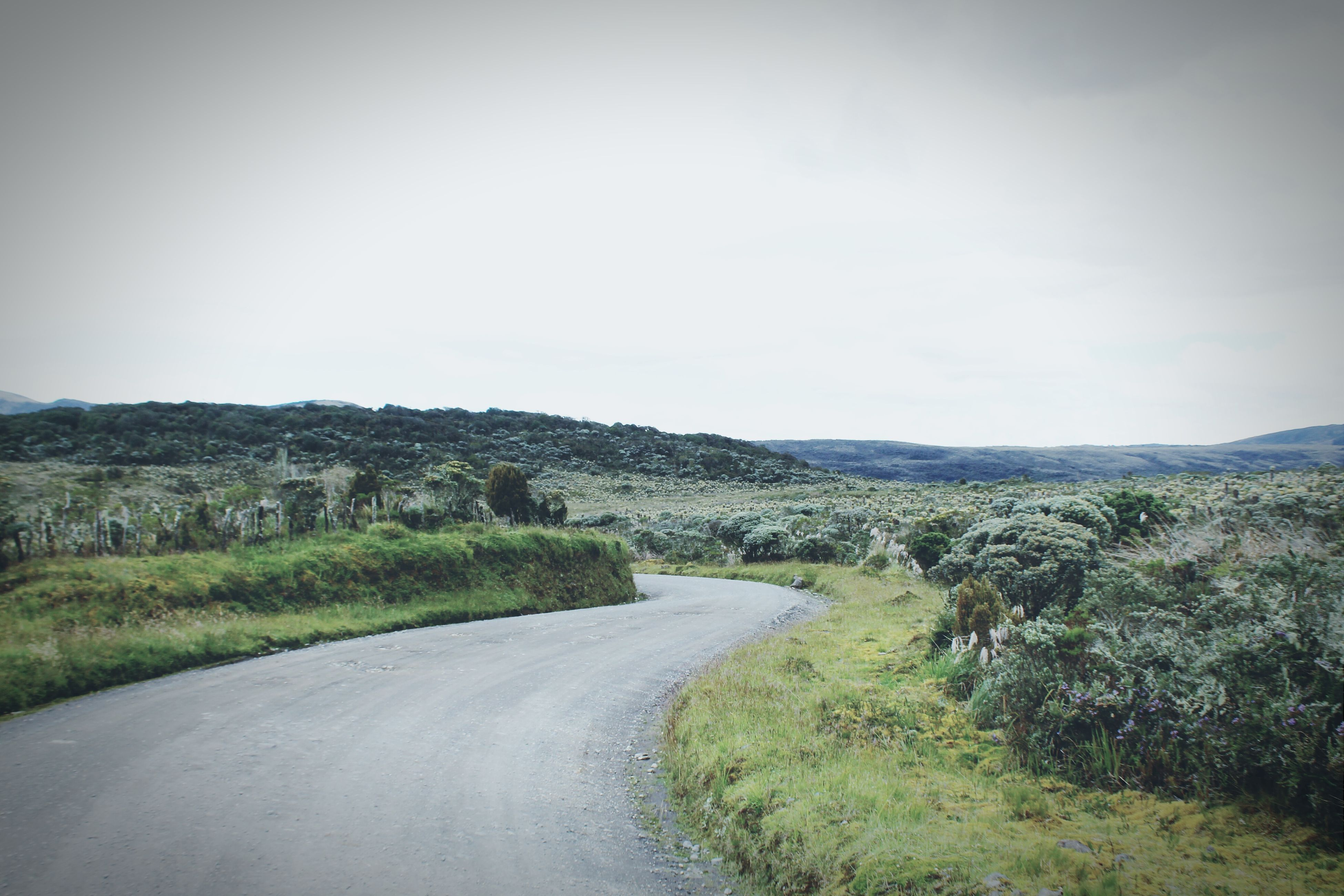 Vanishing Point Colombia Roadtrip Traveling Pnpurace Volcan Purace Páramo