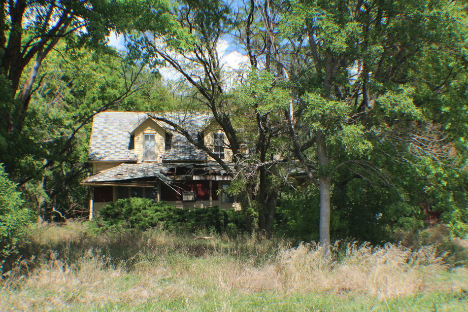 Run Down Places Run Down Building Farm Countryside Country Life Farmhouse Trees