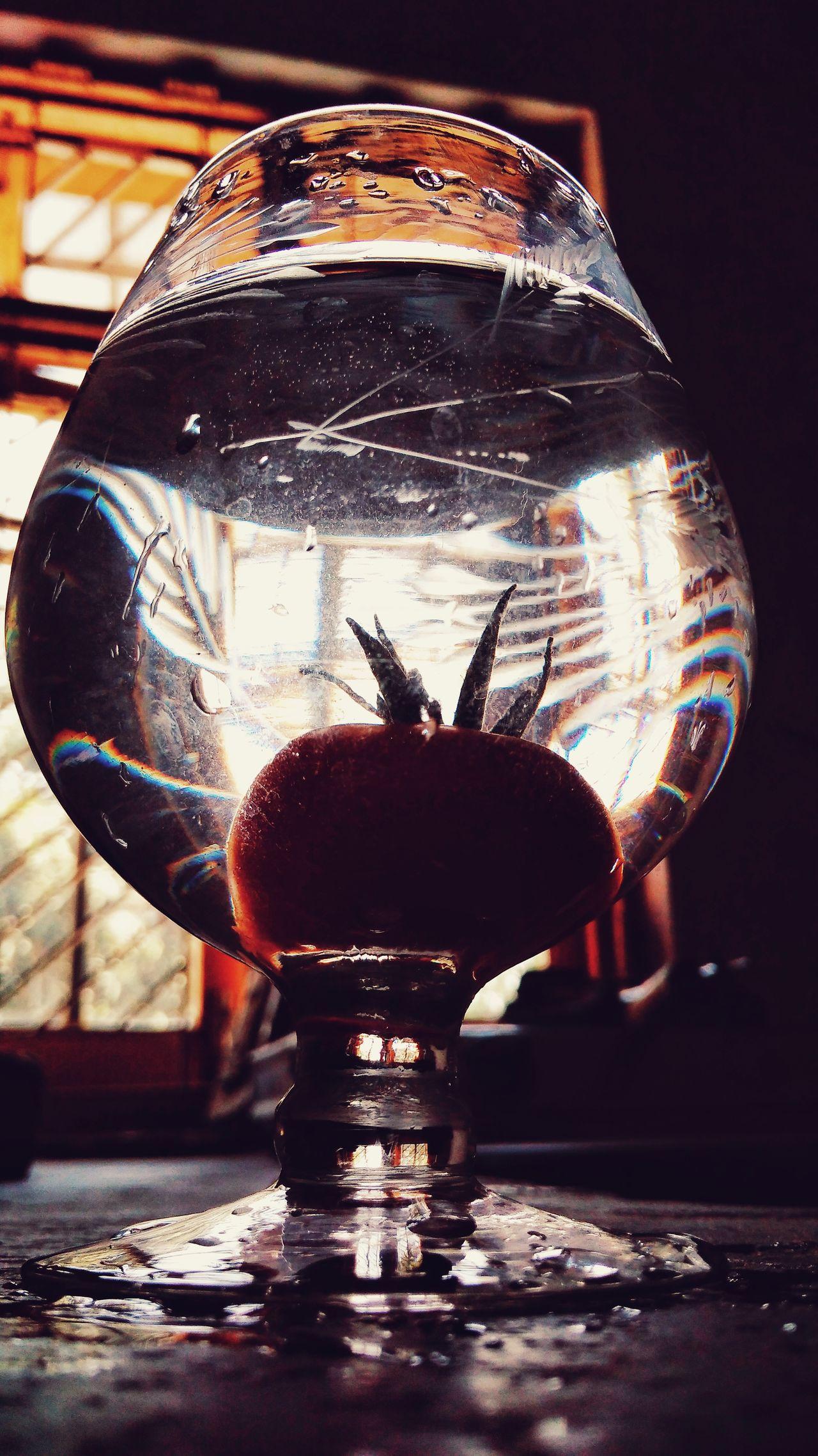 ©kavita_choudhary_photography Water Indoors  No People EyeEmNewHere Photographer Photography The Portraitist - 2017 EyeEm Awards Tranquil Scene Tranquility Illuminated Mobileclick Pattern Silhouette Indoors  BYOPaper! Arts Culture And Entertainment Jammudiary Wineglass Art Tomatoes🍅🍅 Lowangleshot SunsLight Windowlighting BYOpaper