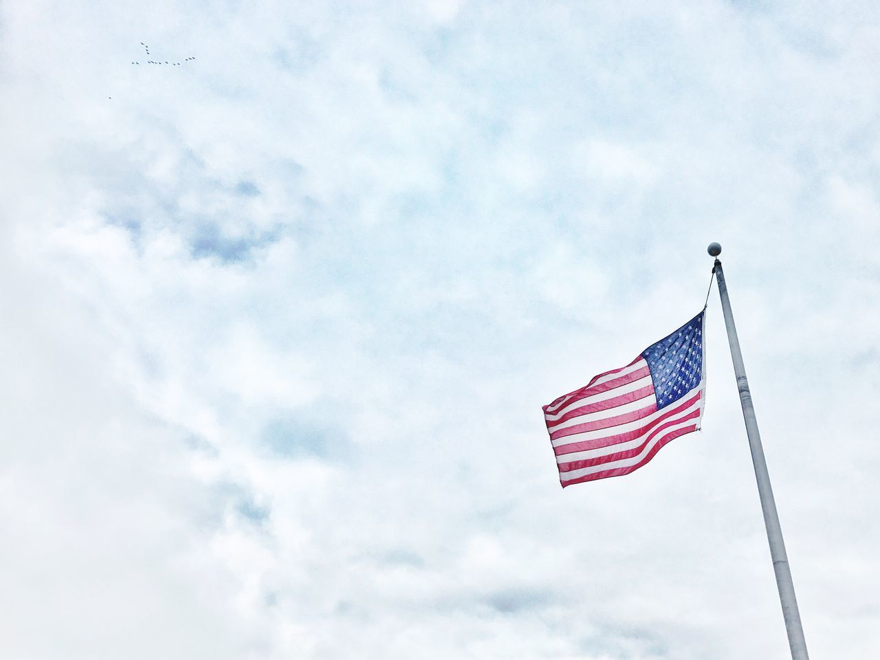Hanging by a thread Patriotism Flag Low Angle View Striped Cultures Sky Stars And Stripes My Year My View Red No People Flag Pole Day Outdoors Chance Encounters American Flag Birds Wind Windy President Presidential Election 2016 Patriotic Patriot USA United States America