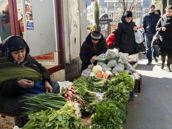 Women sell vegetables and green spices on Freedom Square Freedom Square  Green Sell Spices Vegetables Women