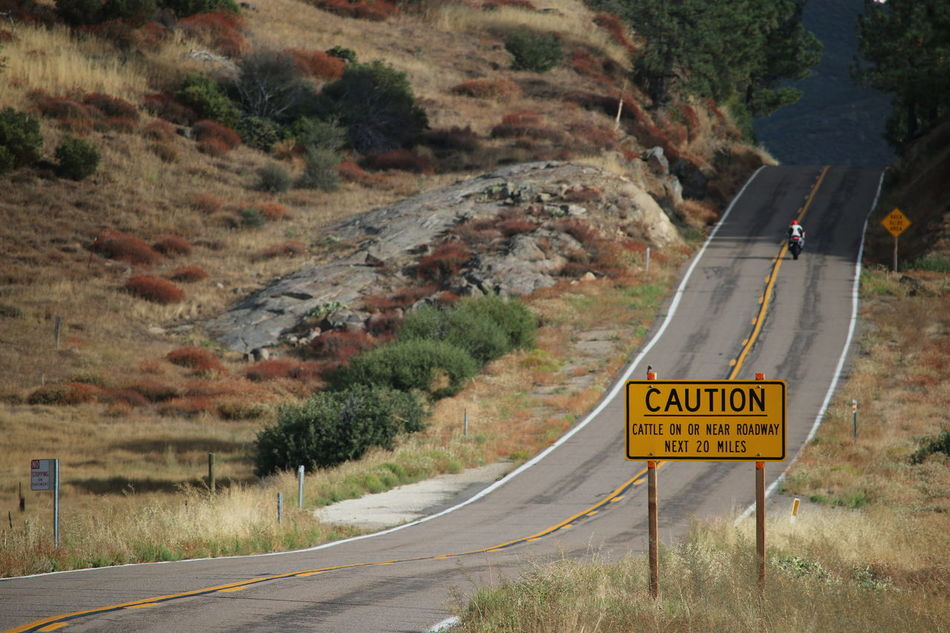 Road Western Script Text Warning Sign Road Sign Danger Communication The Way Forward Transportation Day Nature Mountain Speed Limit Sign Outdoors Guidance No People Tree Travel Destinations Winding Road Vacations