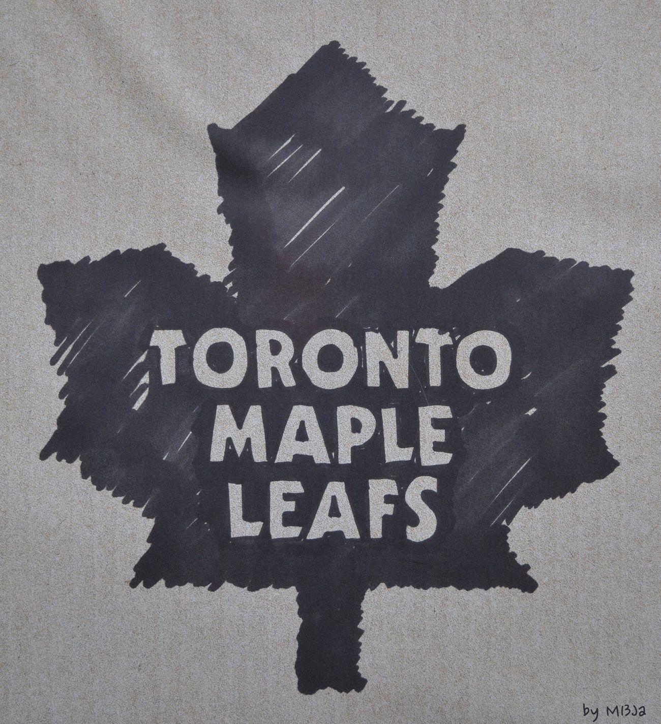 Icehockey Stadium Icehockey Toronto Eishockey Symbol Zeichen