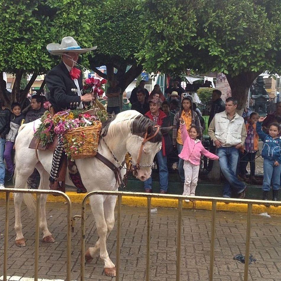 Arandas niñas hermosas pidiendo su flor al jinete en el Combatedeflores Mexico Estoesmexico Tradición Travel_learn_explore_the_world 🇲🇽 Vive_mexico ViveMexico