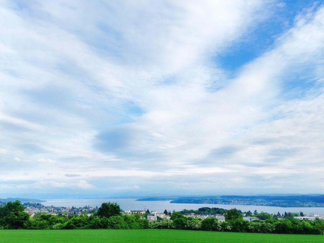 Blick über Überlingen und den Bodensee Lake Constance