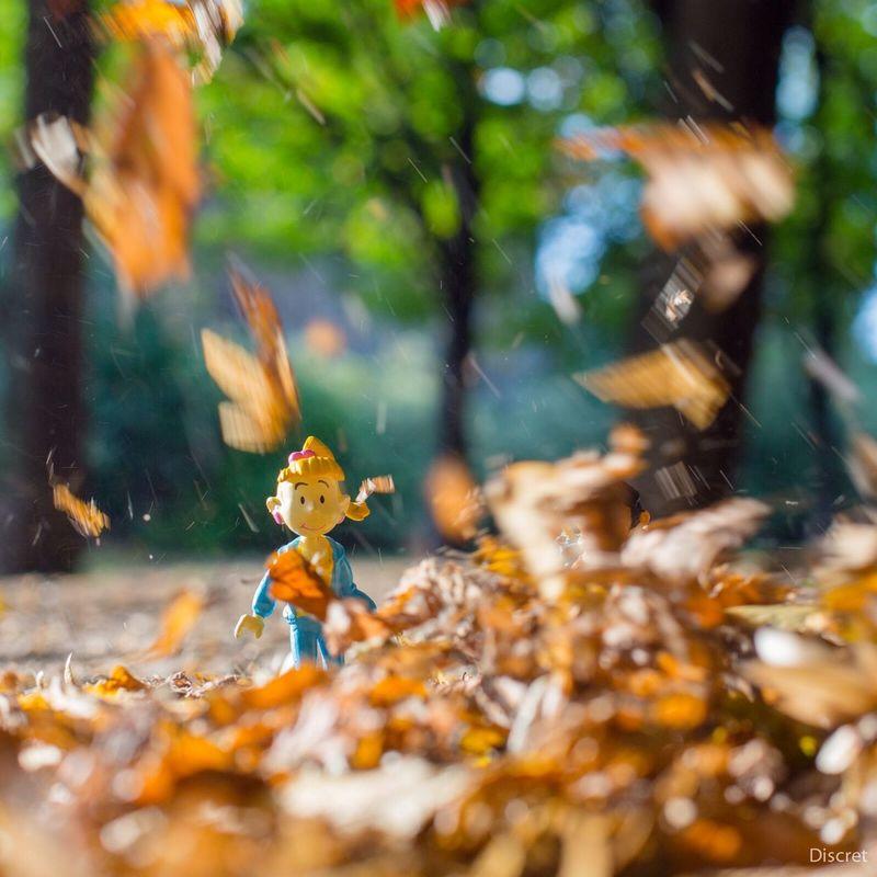 WOW Gastonlagaffe Secotine Autumn