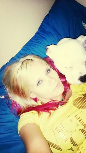 Gogo  Man's Best Friend Welcome To The Mind Of A Maniac Pit Bull Lover & Supporter