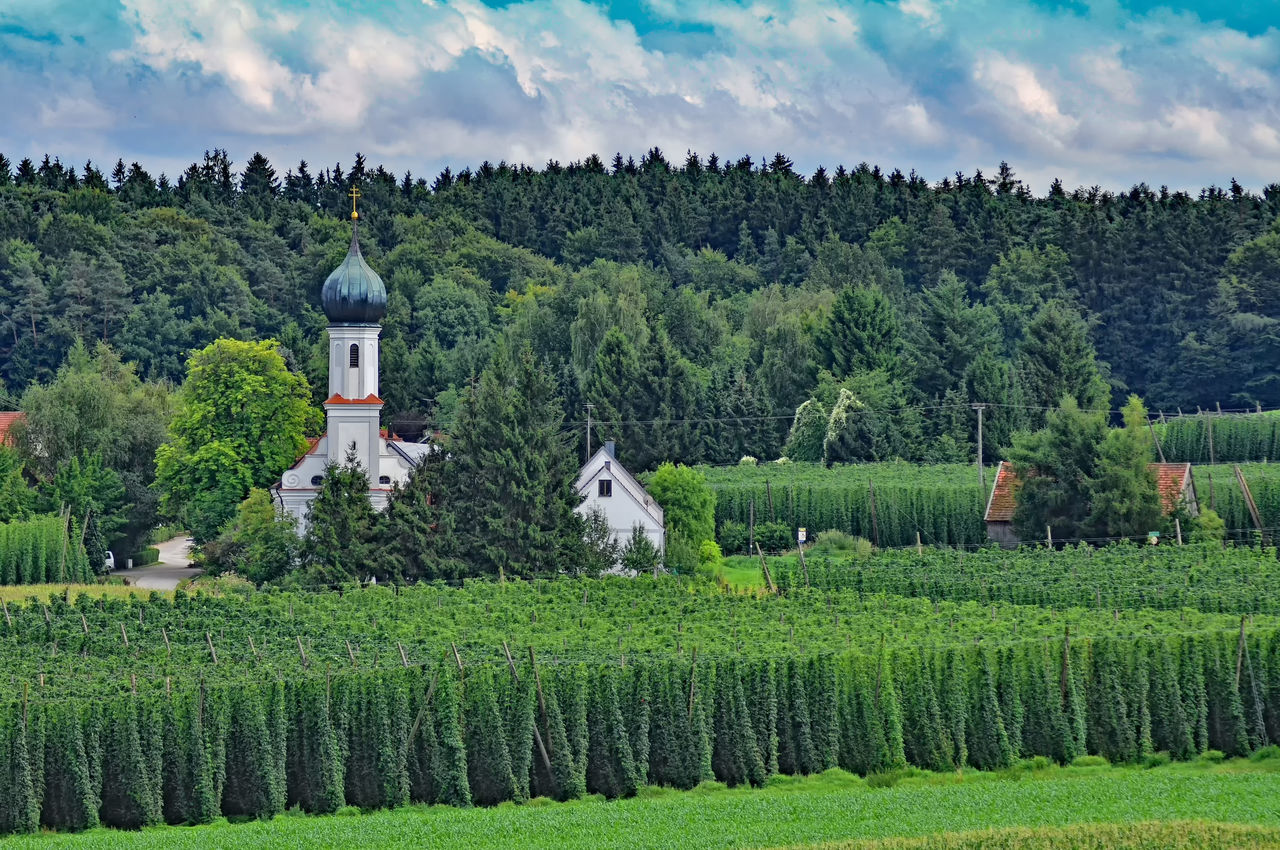 Architecture Building Exterior Built Structure Countryside Day Exploring Grass Green Green Color House Lush Foliage Nature Photography Outdoors Pilgrimage Church Religion Residential Structure Spirituality Town Tree Village