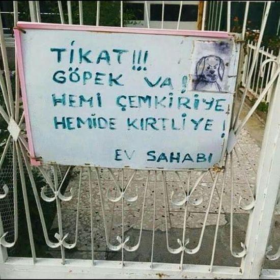 Hahhahahhhhh :)