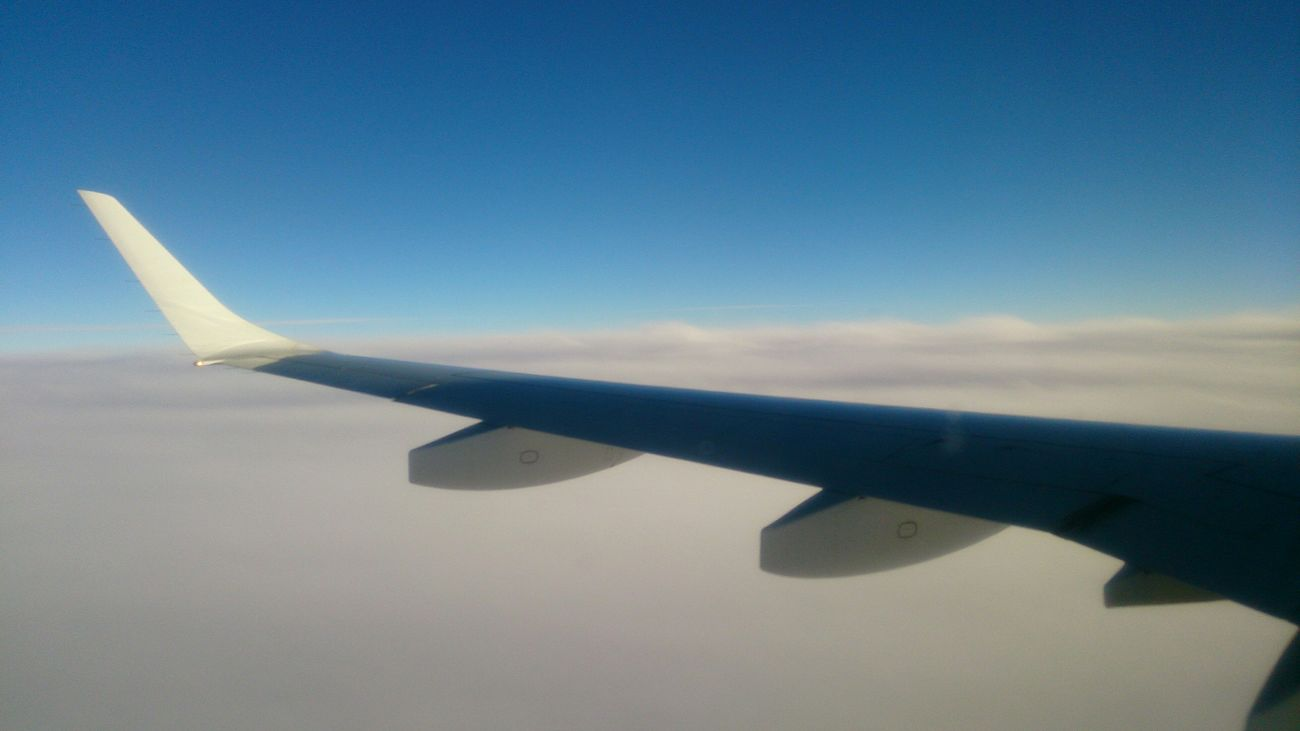 Sky, Fly, Enyoing The View  ...
