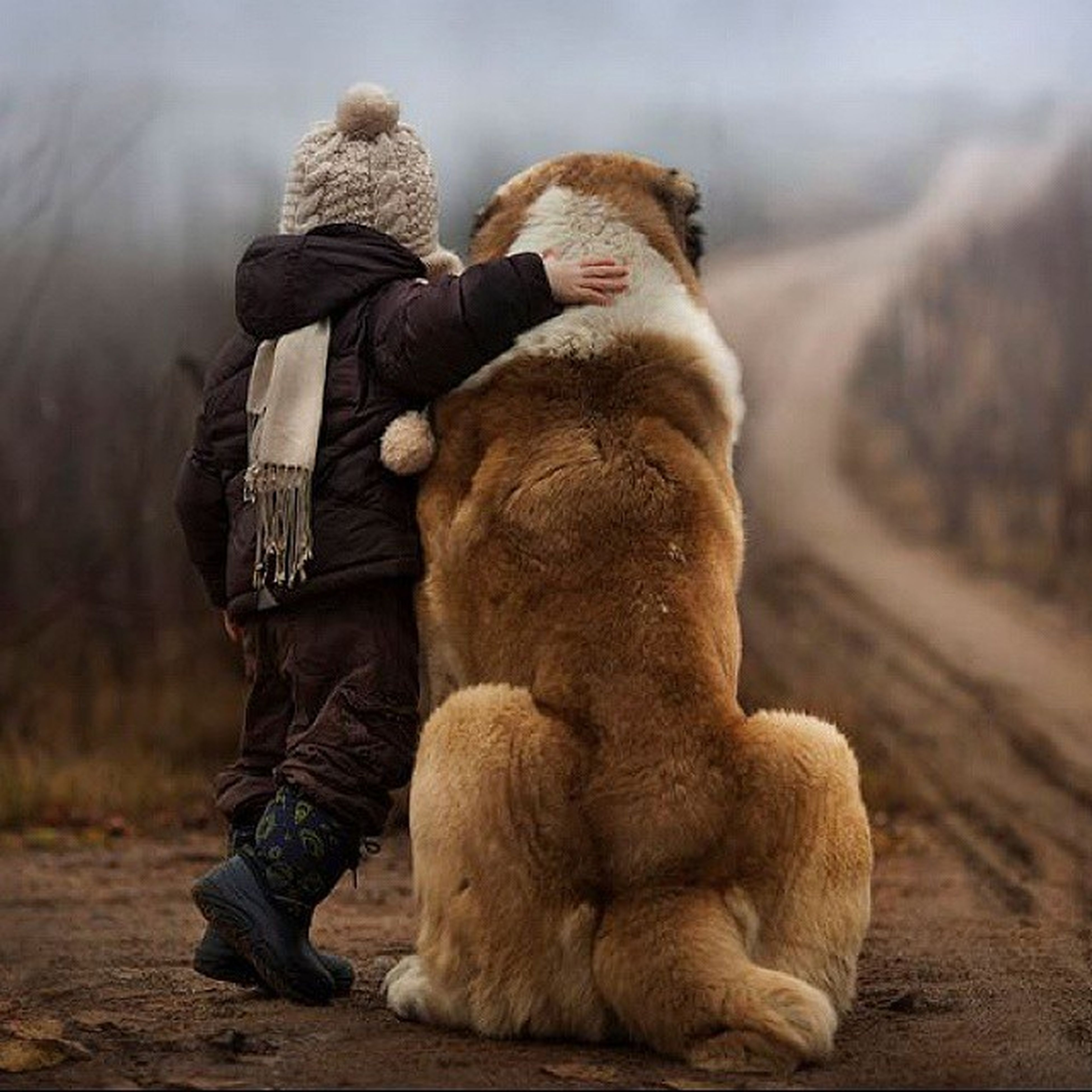 animal themes, mammal, domestic animals, sitting, full length, relaxation, one animal, togetherness, lifestyles, rear view, bonding, casual clothing, leisure activity, men, pets, lying down, dog