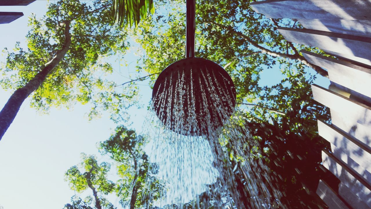 Beautiful stock photos of shower, Day, Directly Below, Fence, Front Or Back Yard