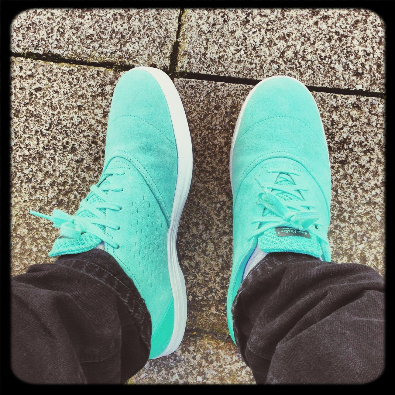SneakersNikesb Janoski Max