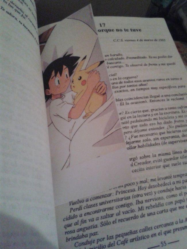 La mejor convinacion: libro y picachu :3