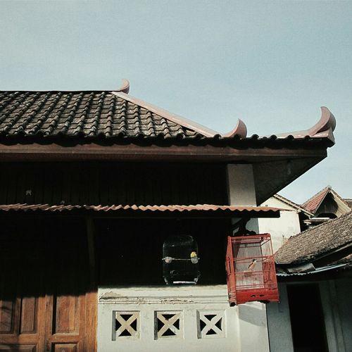 Visit Instagram @hendradarma28 Popular Photos Wonderful Indonesia Exsplore_jogja Yogyakarta Sunset_collection EyeEm Indonesia Indonesia_allshots Getting Inspired Discover Your City Melancholic Landscapes