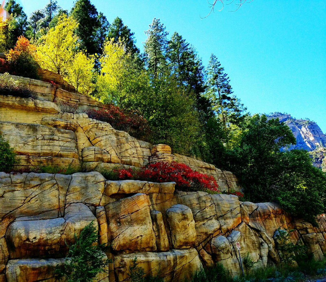 Mountains And Sky Changing Leaves Scenic Drive .l love Gaia . The way up to Oak Creek Canyon, Nature Photography