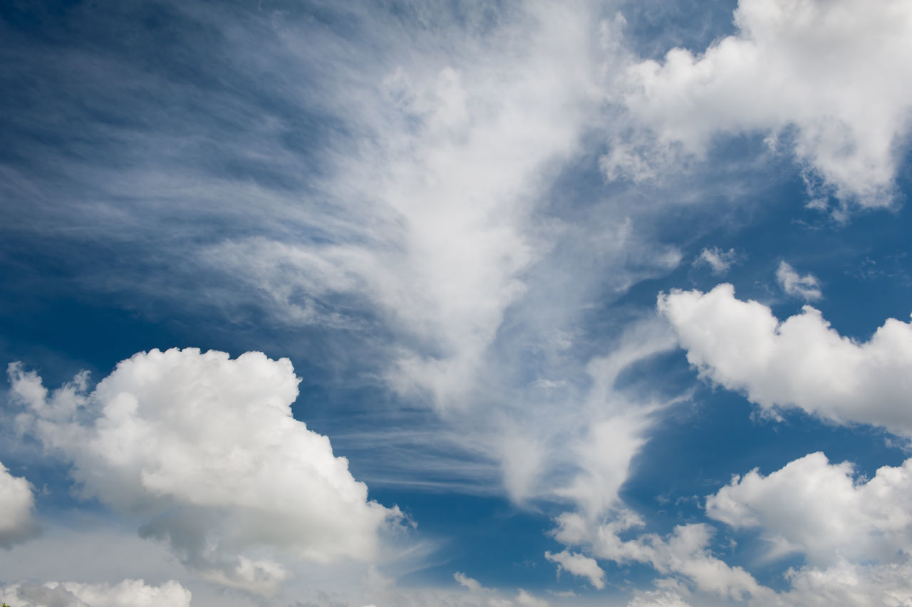 White various clouds formation mix on blue sky, cloudscape and sunny weather in horizontal orientation, nobody. Air Backgrounds Blue Blue Sky Cirrus Clear Sky Cloud - Sky Clouds Clouds And Sky Cloudscape Cloudscape Combination Cumulus Cloud Day Formation Nature No People Outdoors Scenics Sky Sunny Tranquility