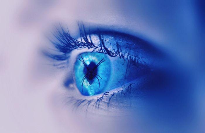 Close-up Eye Blue Eyelashes Eye4photography  EyeEm Gallery EyeEm Best Edits Edit Photoshop Spider Hello World See The World Through My Eyes BlueEyes Natural Beauty Iseeyou EyeEmBestEdits Body Part EyeEm Best Shots Close Up