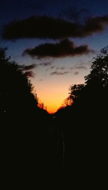Sunset Tree Transportation Sky The Way Forward Cloud - Sky Nature Beauty In Nature Outdoors Silhouette Dramatic Sky Tranquility Road No People Day Taking Photos Dramatic Sky Beauty In Nature