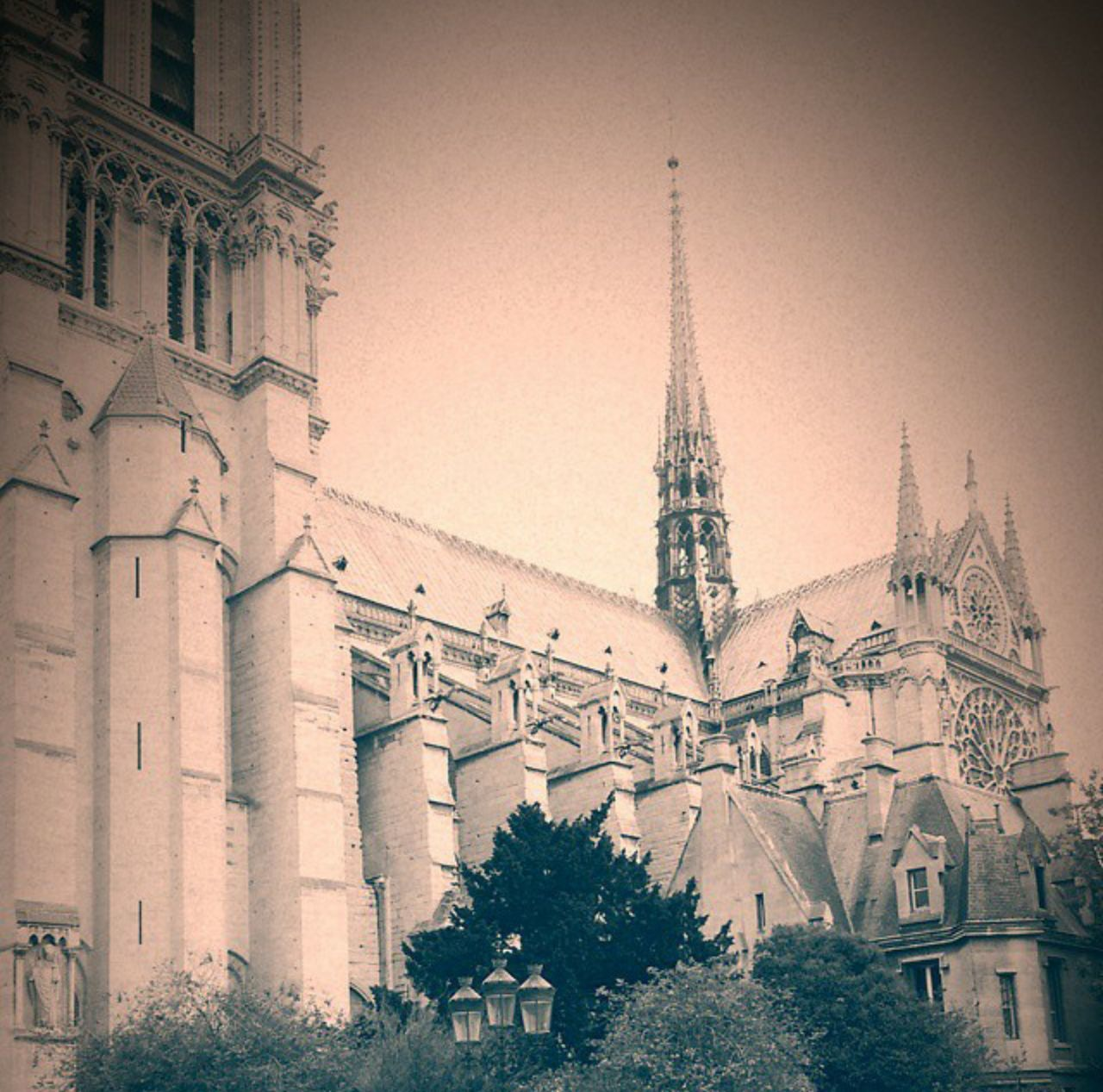 Cathedralenotredame Paris France Cathedral France Photos