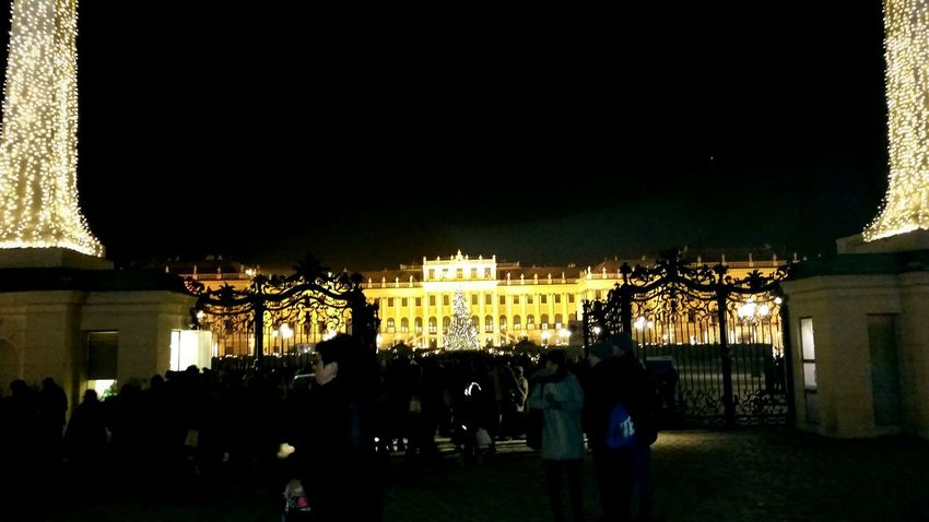 Night Large Group Of People City People Illuminated Outdoors Christmas Tree History Tourism Schönbrunn Castle Christmas Time Christmas Lights Christmas Decorations Vienna Austria Christmas Market Christmas Schonbrunn Palace Travel Destinations City Castle Gate