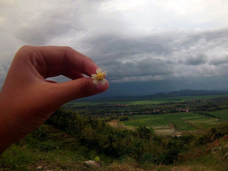 Flower Naturephotography Hill Hiking Noedit Nofilter Nofilter#noedit Backpacker Central Java Showcase April