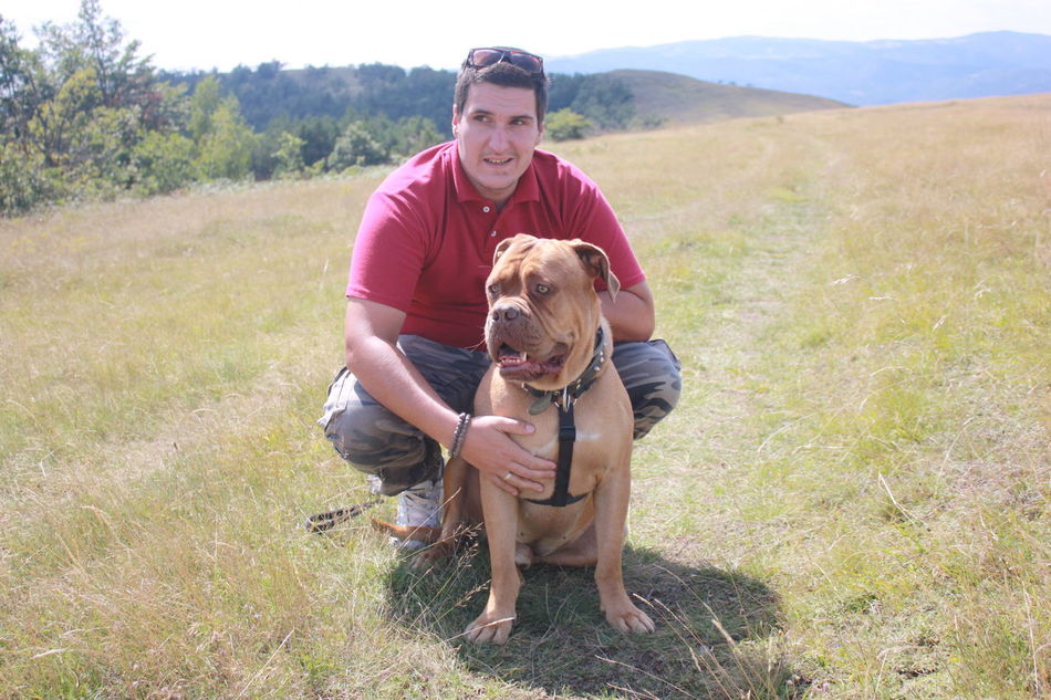 My boys City Escape Day Dog Dogue De Bordeaux Field Focus On Foreground Full Length Hubby Leisure Activity Lifestyles Loved Ones My Boys Nature Pet Rural Scene Serbia Togetherness Two Is Better Than One Vacations
