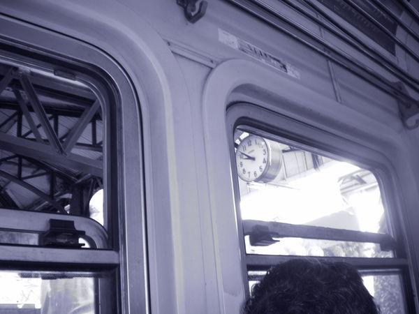 Black & White Cruda  Ferrocarril Lanus Longchamps Roca Showcase: January Train Color Palette