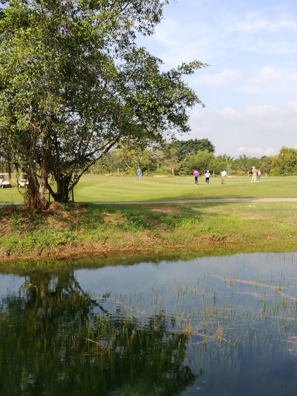 tree, leisure activity, grass, nature, real people, beauty in nature, water, day, green color, growth, sky, reflection, lifestyles, lake, golf, outdoors, golf course, tranquility, weekend activities, tranquil scene, scenics, men, playing, togetherness, green - golf course, golfer, people