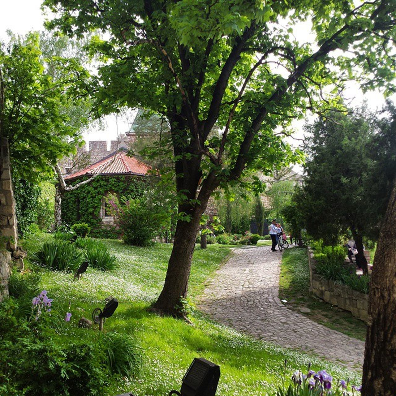 Kalemegdan  Park Belgrade Ig_bgd Ig_belgrade