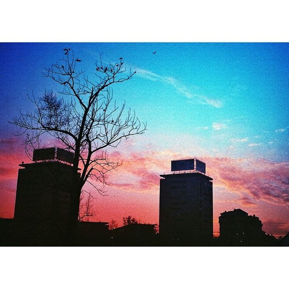 slika februara. ? Sunset