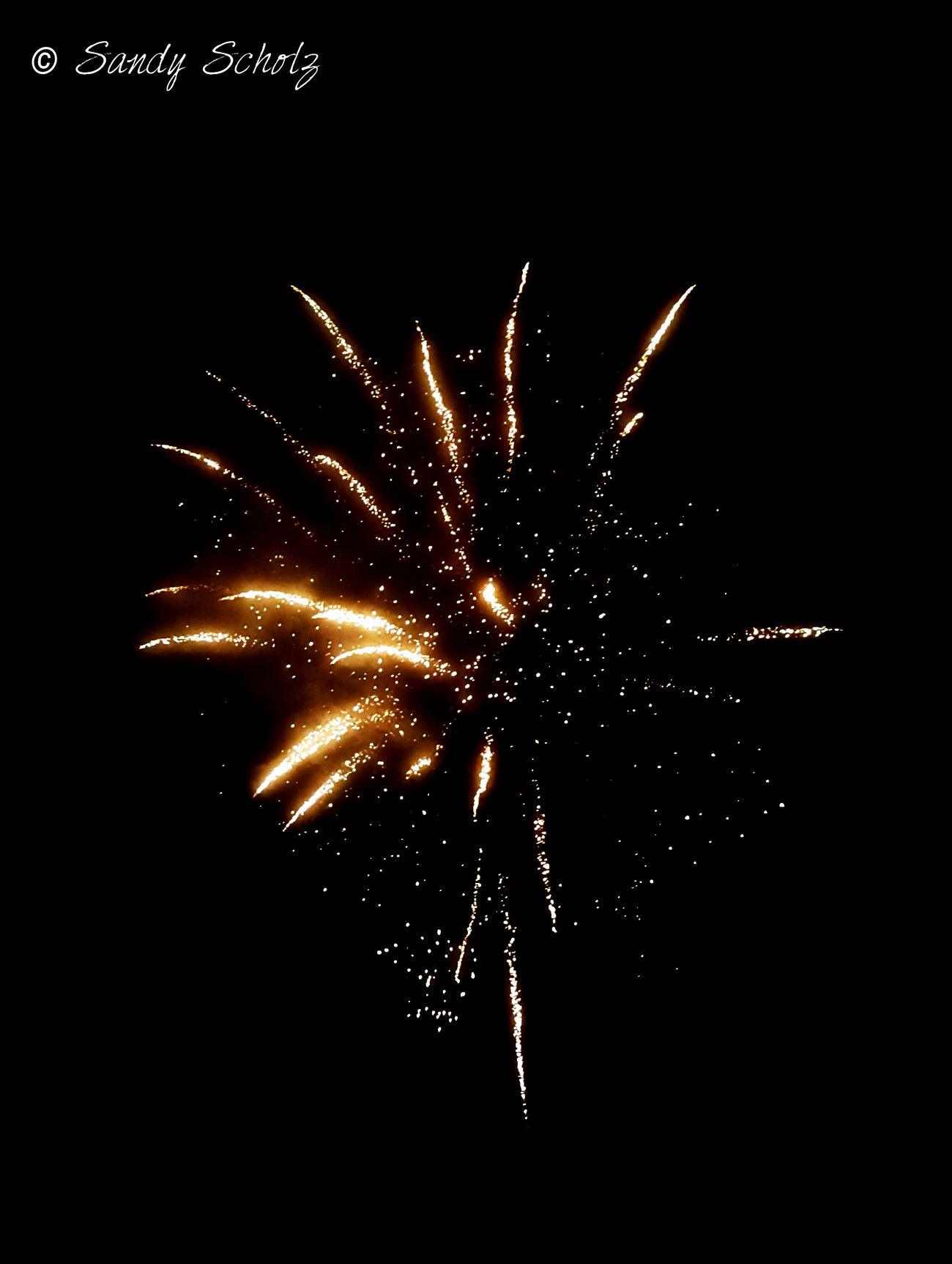 Exploding Firework Fireworks Fireworksphotography Fireworks In The Sky Fireworks❤ Fireworks Photography GERMANY🇩🇪DEUTSCHERLAND@ Bayern Germany Deutschland Germany Bayern StreamzooVille Streamzoofamily StreamzooPics Streamzoo Family Eyeemphotography Firework Display Happy New Year Happy New Year! Happy New Year 2017 Happy New Year Happy New Year 2017! Happy New Years  Happy New Year!!!