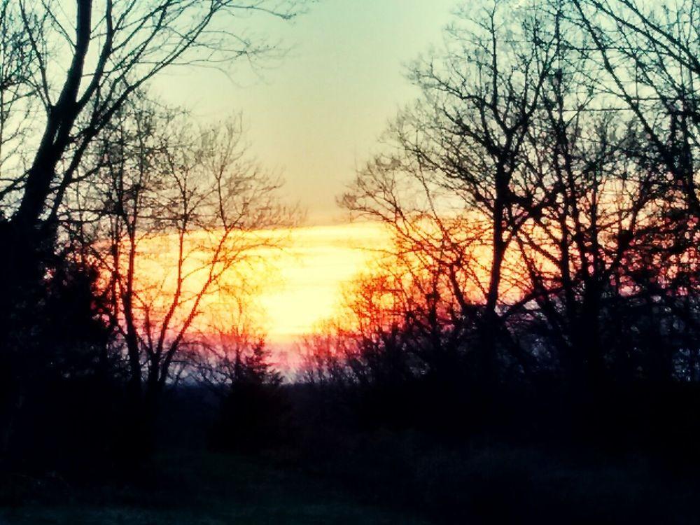 My Sun Set 3