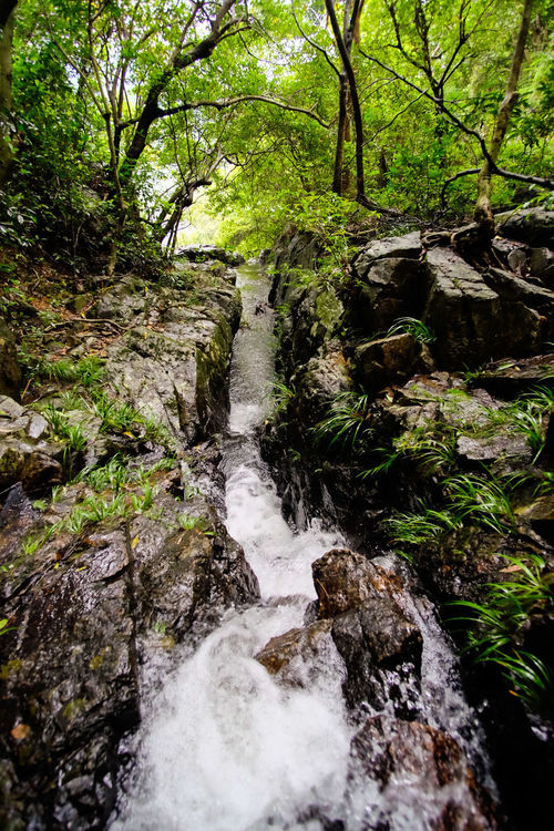 HongKong Hongkong Photos Hiking Summer Fujifilm X-E2 Photography 2016 Fujifilm River Zioncheng Love Natural