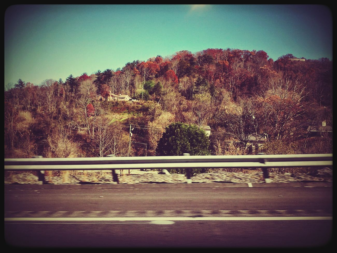 Auto Post Production Filter Sky Tree Outdoors Day No People Building Exterior Nature Mountain Road Dream Big Aim High Open Minded Happiness Vintage Hobby💛 The World Is My Canvas 🎨 Urban Photography Asheville Mountains Breathtaking_beauty Lifestyles Cold Temperature Nature's Diversities Clear Sky Close Your Eyes And Feel It Freshness