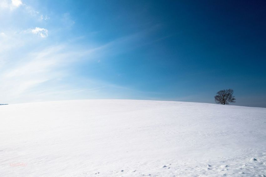 Hokkaido Japan そら