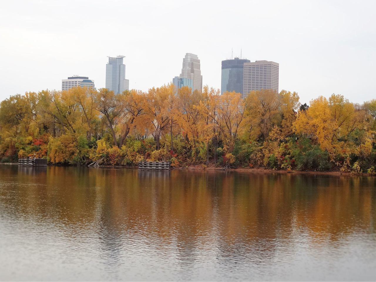 Shot of downtown Minneapolis from Boom Island. Architecture Autumn Building Building Exterior Built Structure City Cityscape Day Fall Colors Modern Nature No People Outdoors Reflection Riverside Sky Skyscraper Tabphotography Tree Tree Trees Urban Skyline Water