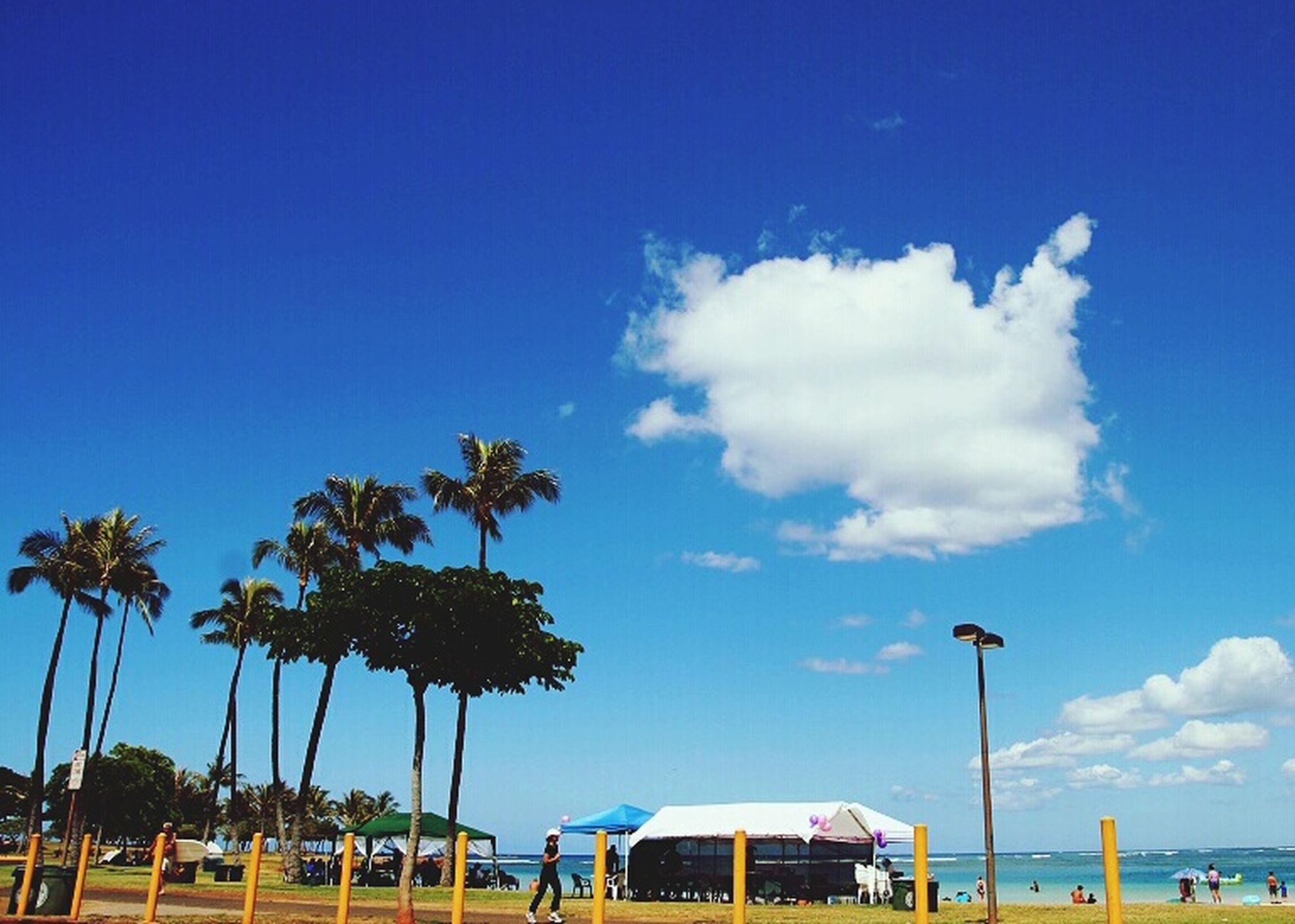 The days on the beach. 夏威夷 Hawaii Beach Summer
