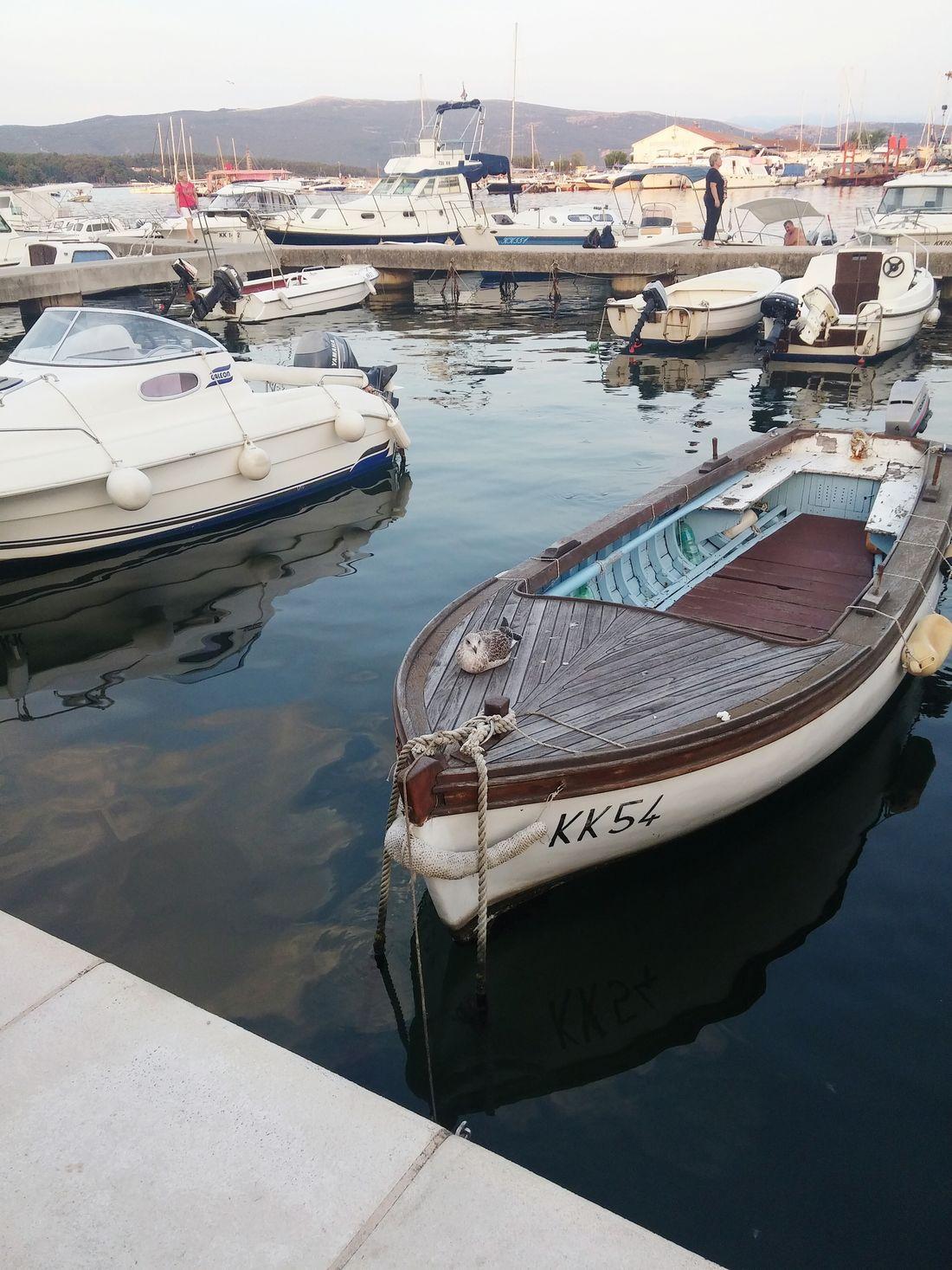 Island Krk Adriatic Sea Relaxing Enjoying Life