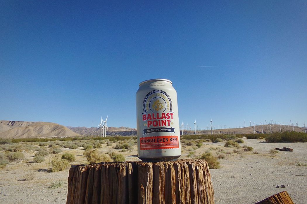 Cool down time Palmsprings BallastPoint Ballast Point Brewing EyeEm Gallery Desert