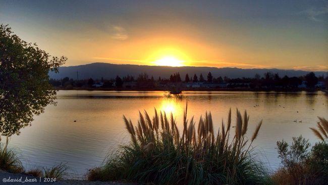 ProhdrSnapseed Sunset San Jose