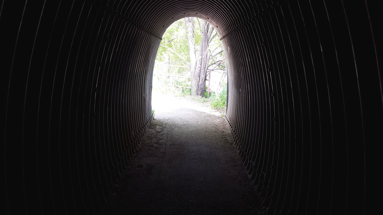 No People TheGreatOutdoors Greettheoutdoors Optoutside Tunnel Tunnel Vision Tunnel View Tunnel Light Daylight Dark Darkness And Light Gloom Morbid Darkness Outdoors Walk Explore ExploreEverything Adventure Wanderlust Wander Outside Colorado Light At The End Of The Tunnel
