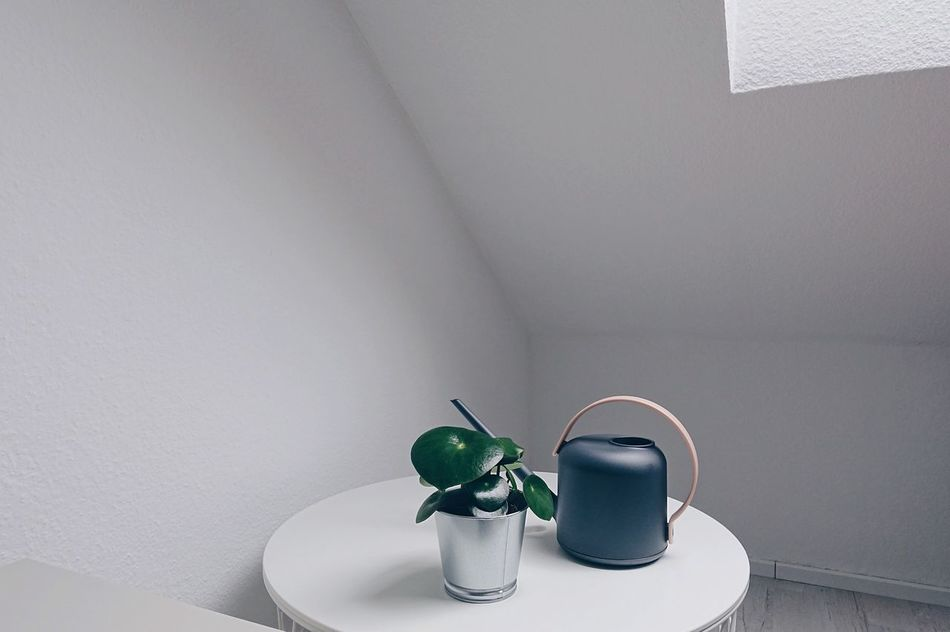 Spring Still Life Springtime Indoors  Table Plant Growth Green White Room Modern Style Sunlight Day Daylight Flower Life Lifestyles Home Interior Freshness Geometry Minimalism Minimal Window Cloudy Art Is Everywhere