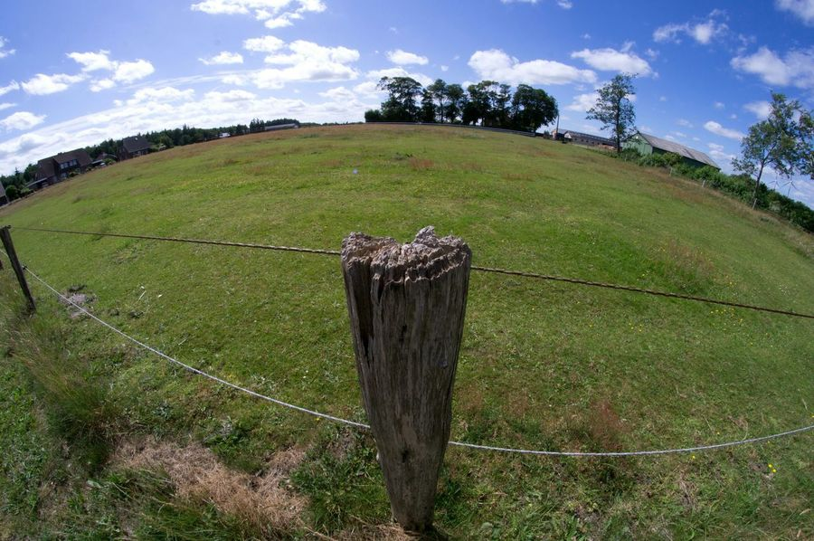 Fence Blue Sky Trees Grass Fish Eye Lens Fisheye Nature Beautiful Nature Sun Clouds